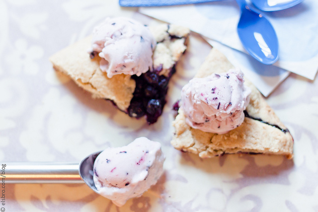 Blueberry Coconut Milk Ice Cream